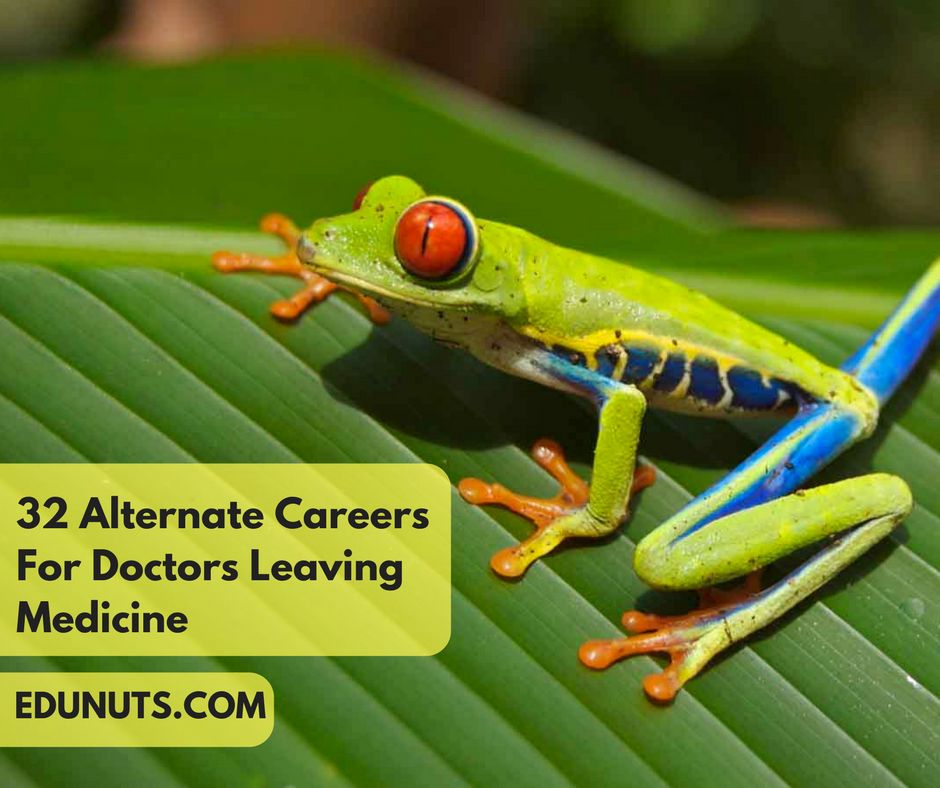 32 Alternate Careers For Doctors Leaving Medicine